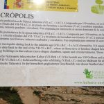 Necropolis info.