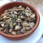 Brillo pad mushrooms