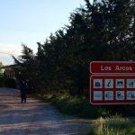 Arriving in Los Arcos
