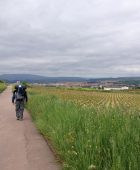 Logrono in the distance.