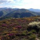 Camino de Santiago, Day 34: Murias de Rechivaldo to El Acebo