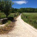 Camino de Santiago, Day 42: Sarria to Ferreiros