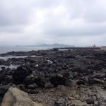 Jeju Olle Trail 10-1
