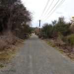 Rotorua trail