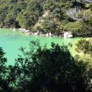 A Walk in Abel Tasman National Park, South Island of New Zealand