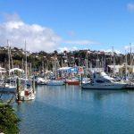 Nelson port