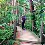 Seokgulam Trail