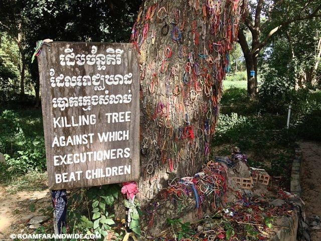 They killed babies by smashing against this tree.