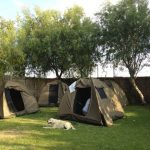 Camping at the Orange River
