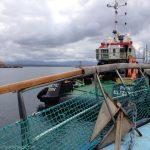Seal Island Ferry