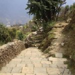 Trekking from Tadapani to Ghandruk