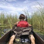 Mokoro ride - Okavango Delta