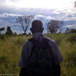 Nature walk in the Okavango Delta
