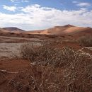 Deadvlei in Namib-Naukluft National Park, Namibia with Nomad Tours – Day 5