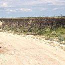 Etosha National Park and Windhoek, Namibia with Nomad Tours – Day 10, 11 & 12