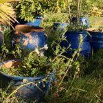 Beautiful blue pots.