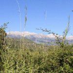 The White Mountains of Crete