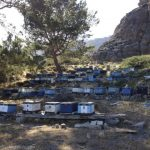 Beehives in Agia Roumeli, Crete