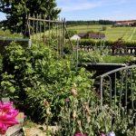 Helmut's farm