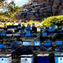 Photo of the Week: Beehives in Agia Roumeli, Crete, Greece