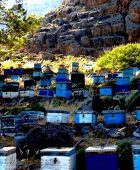 Beehives in Agia Roumeli