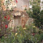 Garden in Chania