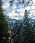 Yosemite in December
