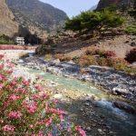 The river in Agia Roumeli