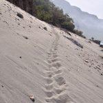 Walking across sand dunes