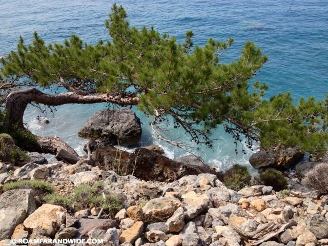 Scenery on the Walk from Agia Roumeli to Agios Pavlos