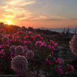 Sunset on Gavdos Island