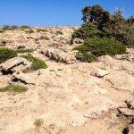 Trail to Agios Ioannis beach