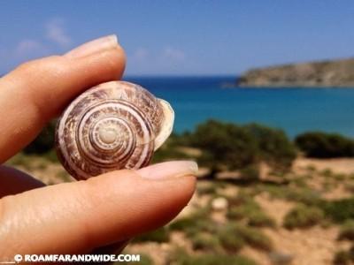 Gavdos Snail House