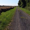 European Peace Walk: Day 9: Narda, Hungary to Szentpeterfa, Hungary