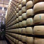 Aging Parmigiano Reggiano