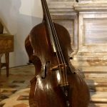 500 year-old bass