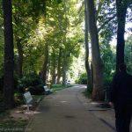 Trieste Park
