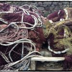 Fishing nets at the harbor
