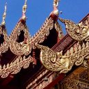 28 Days to Better Health: Week Two in Chiang Mai, Thailand