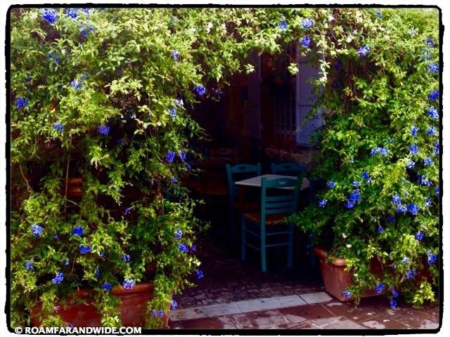 Cafe under flowers